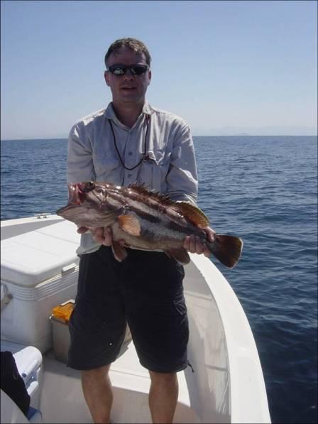 c.3.5kg Grouper 1(12.10.06) (r)