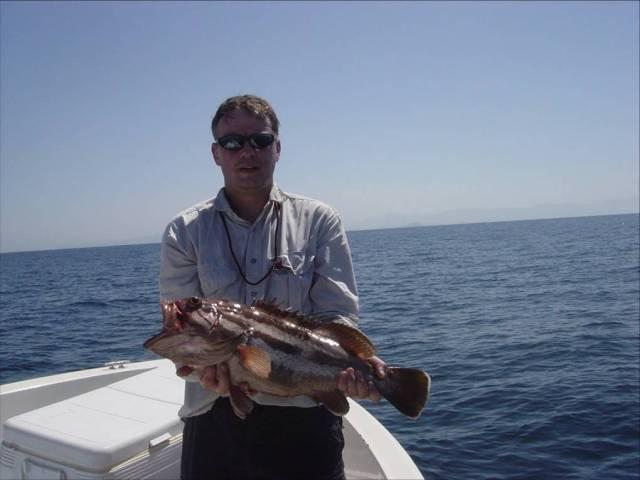 c.3.5kg Grouper 2 (12.10.06) (r)