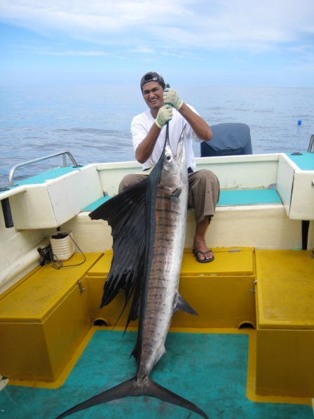 Orient's c.40kg Sailfish (27.10.07)