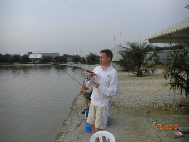 AG_Amazon Redtail Catfish (1) [r]