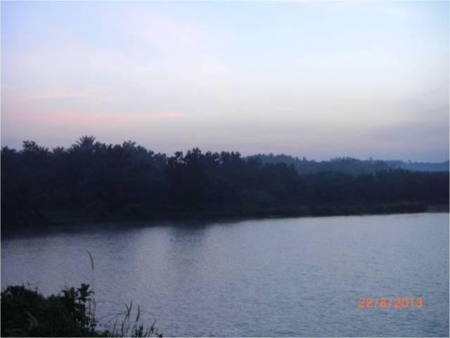 Jurassic Angling Park - J1 Lake (r)