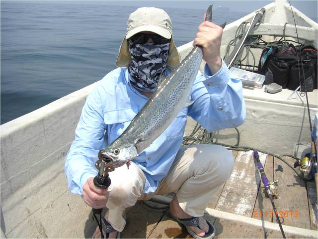 King Mackerel No.3 [r]