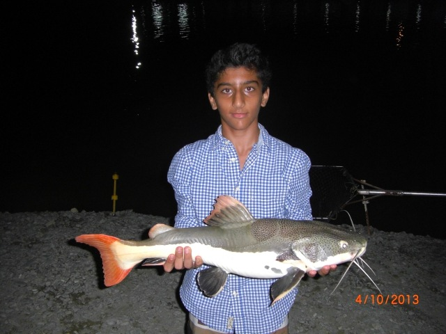 (10)_Abdullah - Fish No.6