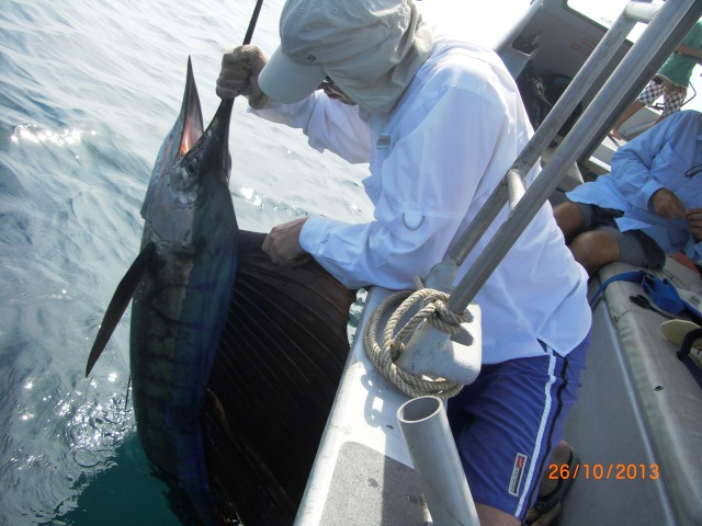 (11)_A.Griffin Sailfish (26.10.13)[ed]