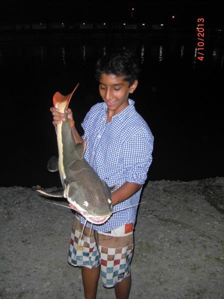 (11)_Abdullah - Fish No.6