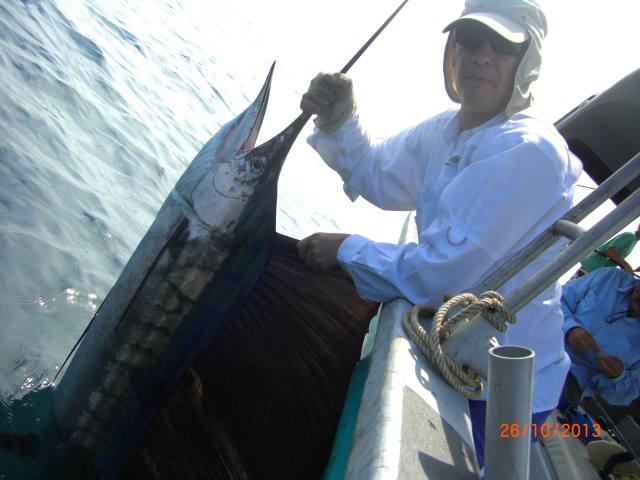 (12)_A.Griffin Sailfish (26.10.13) [ed]