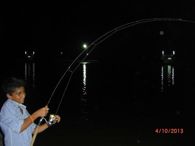 (7)_Abdullah - fighting Fish No.6