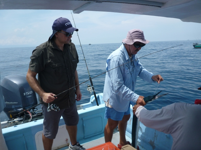 (3) Tom catching a Garfish (12.04.14)