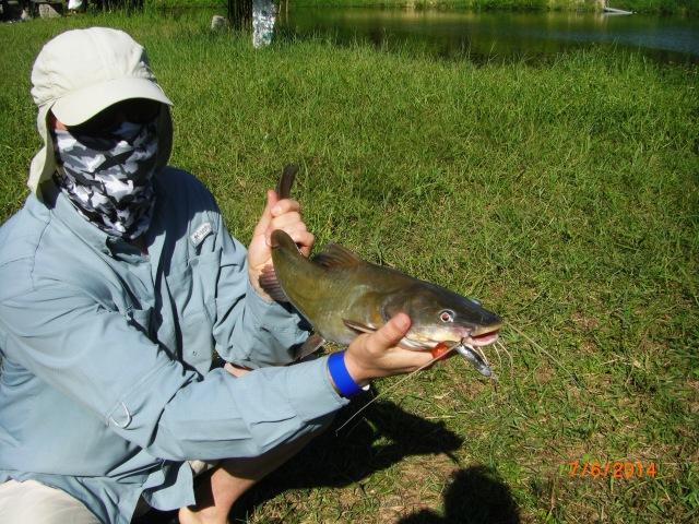 (7)_Catfish No.1 (07.06.14) [ed]