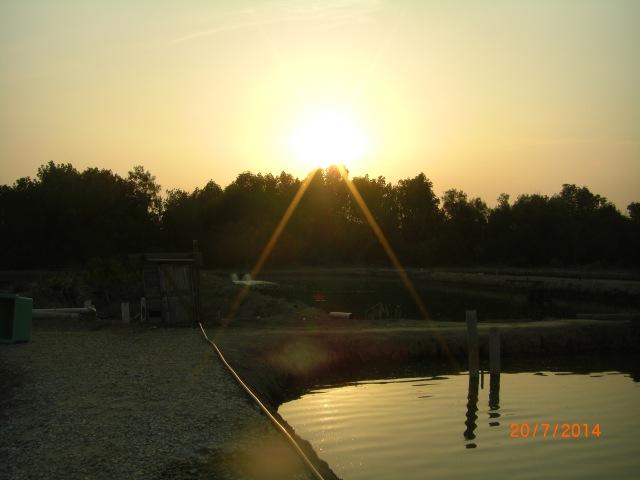 (2)_Sunset at Jugra SW Ponds (20.07.14)