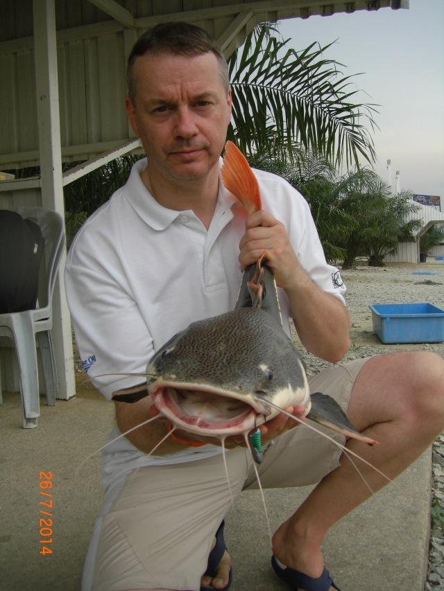 (8)_Amazon Redtail Catfish no.2 (26.07.14)