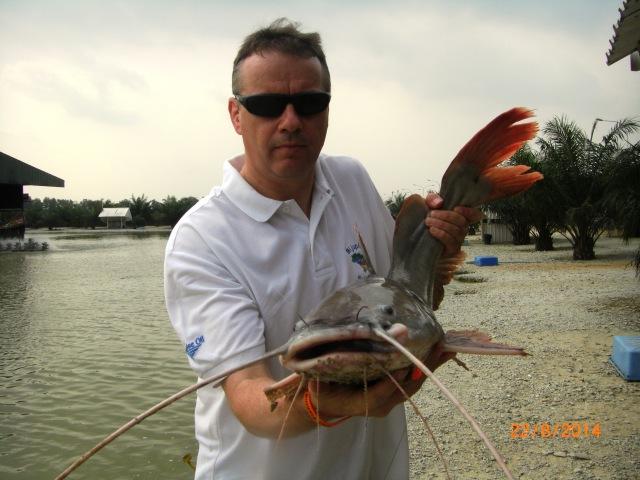 (2)_Fish No.1 - Asian Redtail Catfish (22.08.14) [ed]