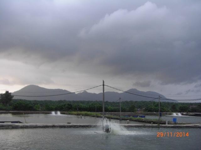 (38)_Storm scenery (29.11.14)