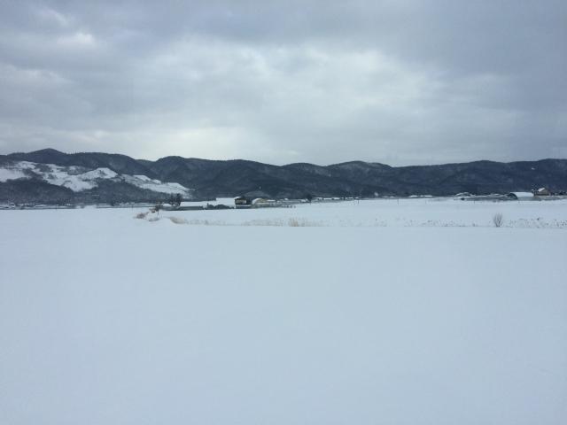 Hokkaido_Furano (Dec. 2014) (7)