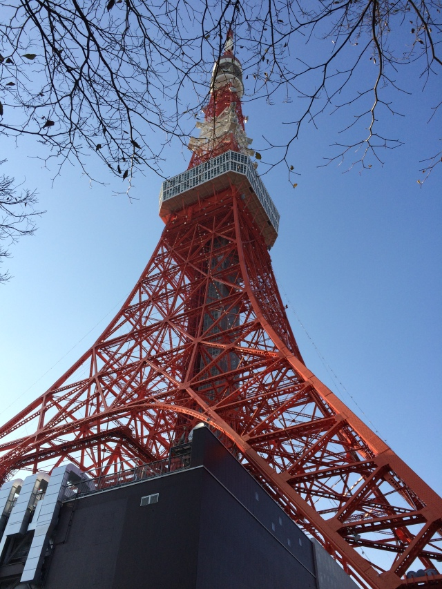 Tokyo Tower (31.1214) (2)