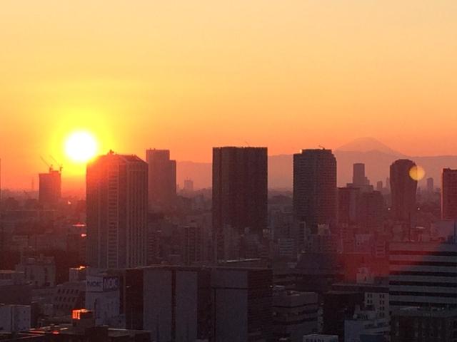 Tokyo_Minato-ku (04.01.15) (8)