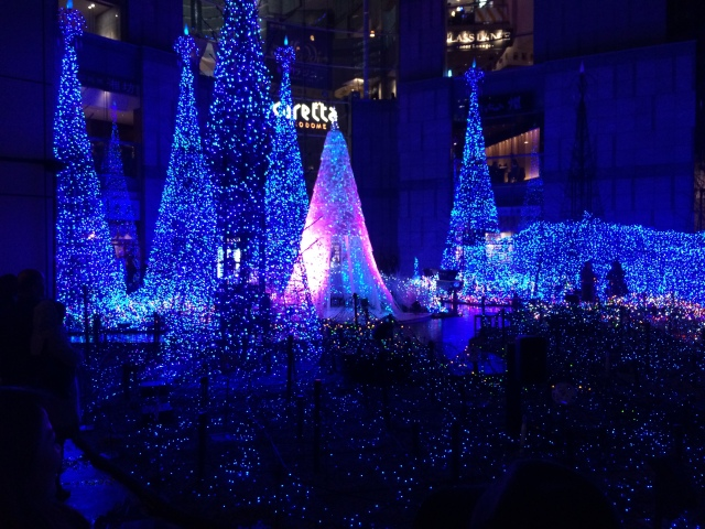 Tokyo_Minato-ku (Dec. 2014) (3)