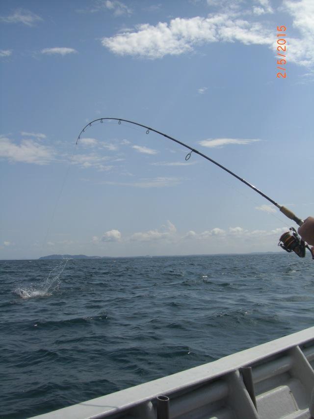 (12)_Ben fighting Queenfish (02.05.15)