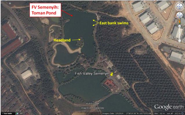 Fish Valley Semenyih - Toman Pond