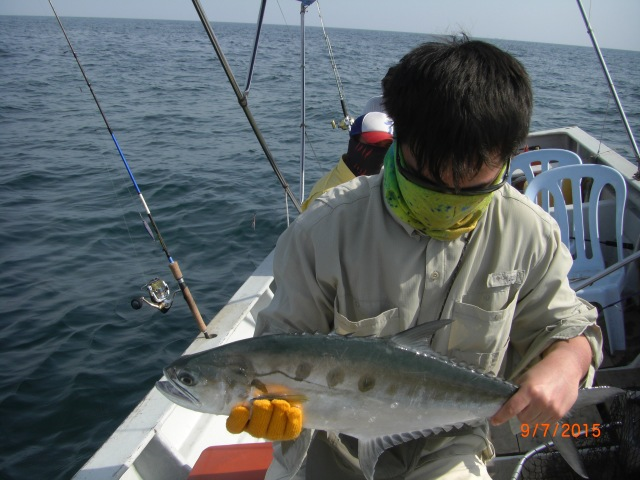 (7)_Sion's Talang Queenfish (09.07.15)