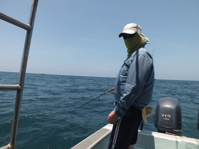(20)_Live-baiting for Sailfish (15.08.15)