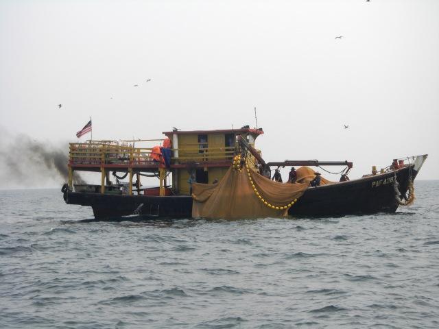 (1.1)_Ikan Bilis Trawler (11.10.15) [ed]