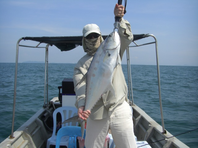 (5)_PD - 4kg Talang Queenfish (14.11.15)