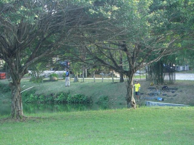 (3)_FV Toman Pond (26.12.15)