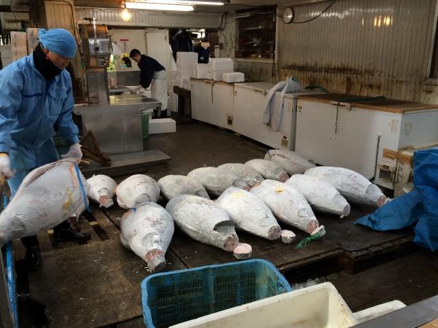 Tokyo Tsukiji Market [29.02.16] (16)