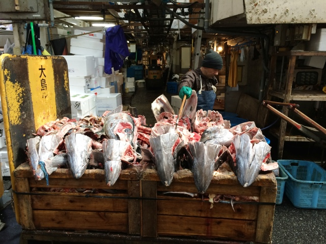 Tokyo Tsukiji Market [29.02.16] (30) [ed]