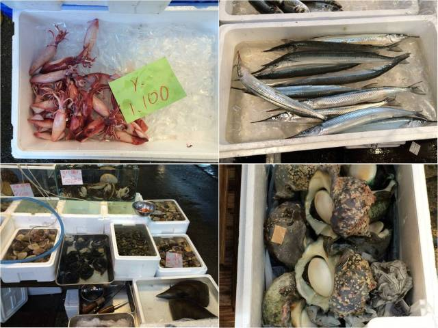 Tsukiji Market - assorted sea food (29.02.16)