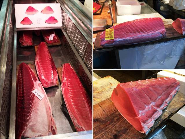 Tsukiji Market - Irish Bluefin Tuna (29.02.16)