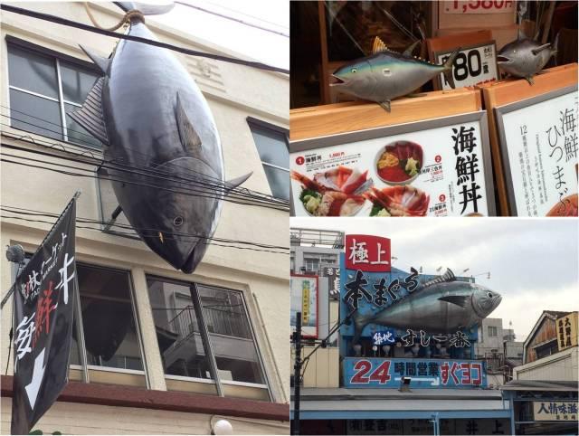 Tsukiji Tuna advertising displays (29.02.16)