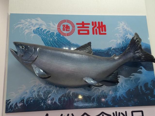 Ueno fishy views [28.02.16] (2)