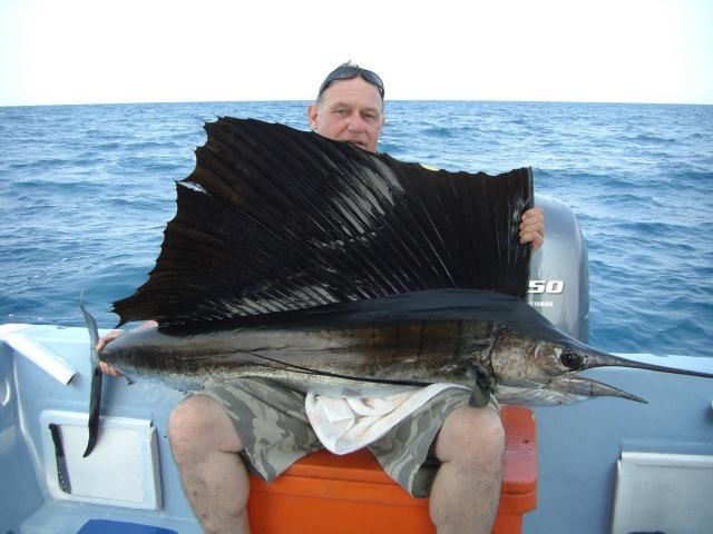 (15) Jochen's sailfish (09.04.16)
