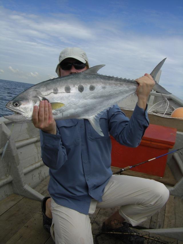 (7) 5kg Queenfish (22.05.16)