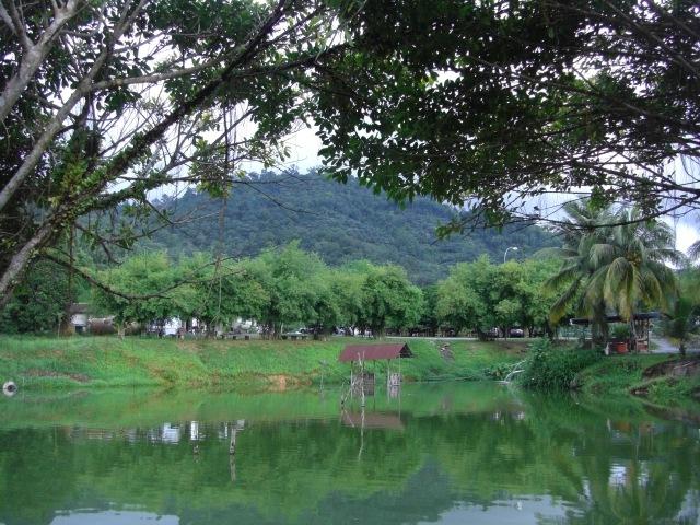 (5) FV Toman Pond views (17.06.16)