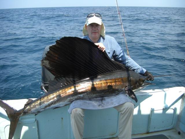 (5) Sailfish (20.08.16)