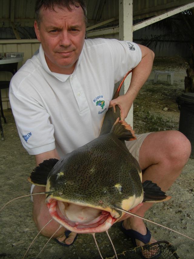 (8) Amazon Redtail_fish no.4 (12.08.16)