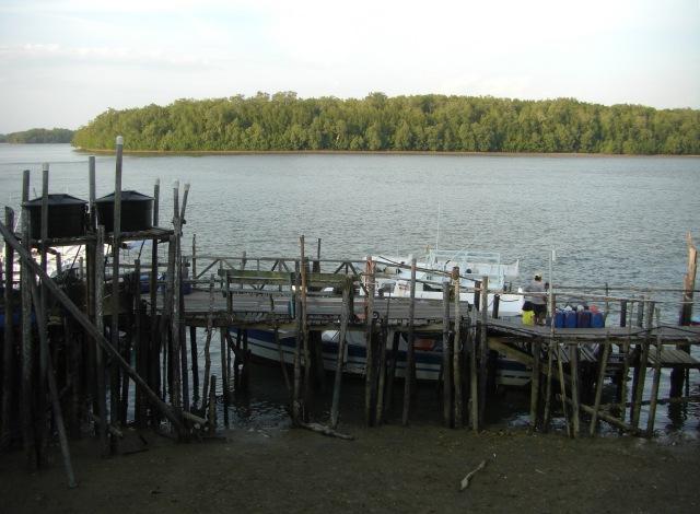 (8) Sungai Rompin low water (20.08.16) [rc]