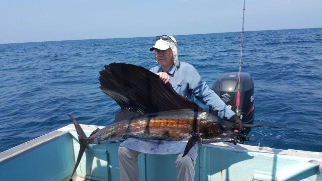 (b) Sailfish (20.08.16)