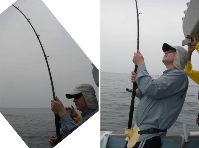 Fighting Sailfish #1 (21.08.16)