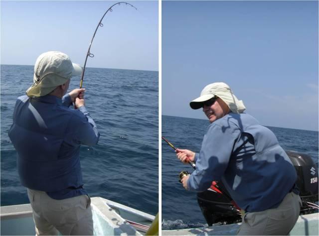 Fighting Sailfish (20.08.16)