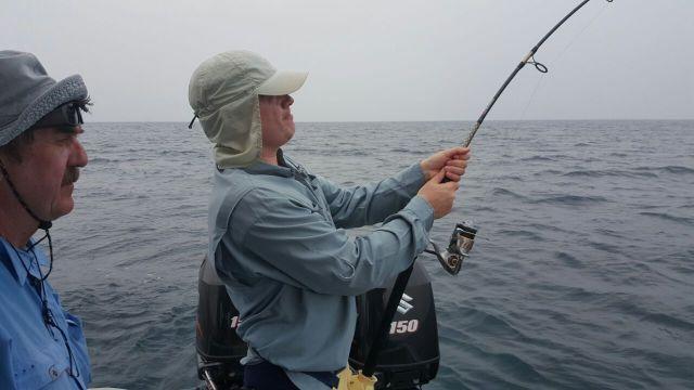 (h) Fighting Sailfish #2 (21.08.16)