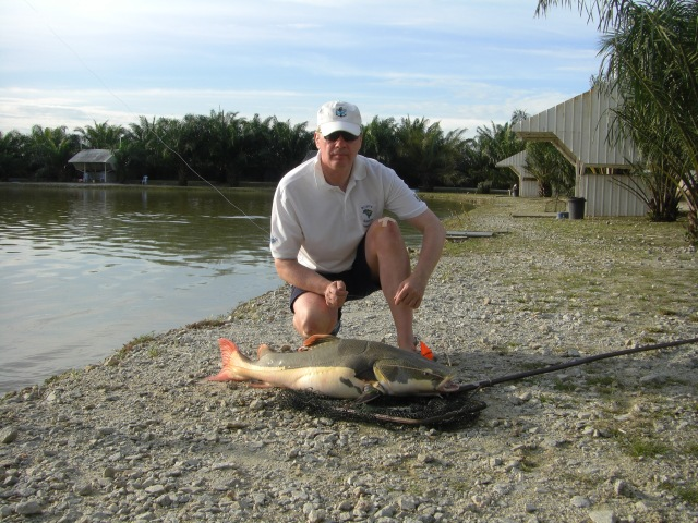 10-amazon-redtail-catfish-5-09-09-16