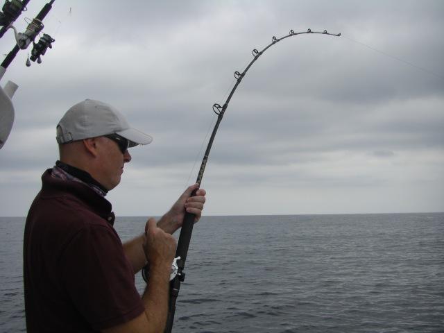 5-frank-sailfish-no-2-17-09-16