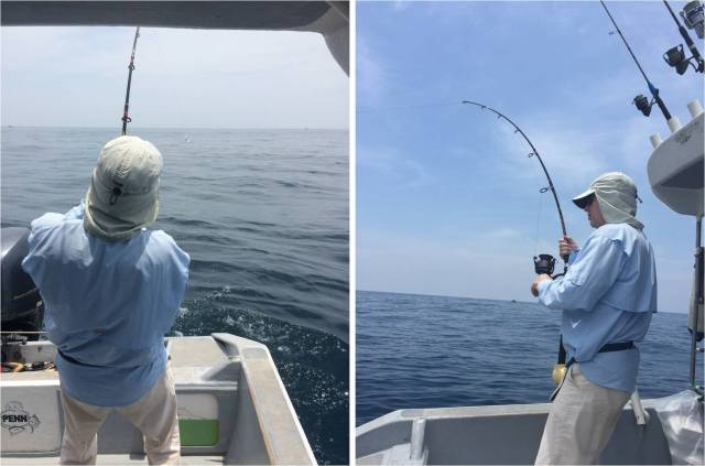 fighting-sailfish-no-1-18-09-16