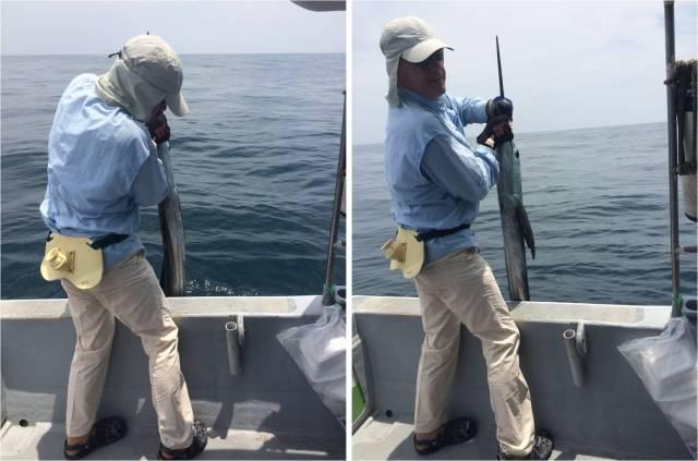 sailfish-no-1-18-09-16