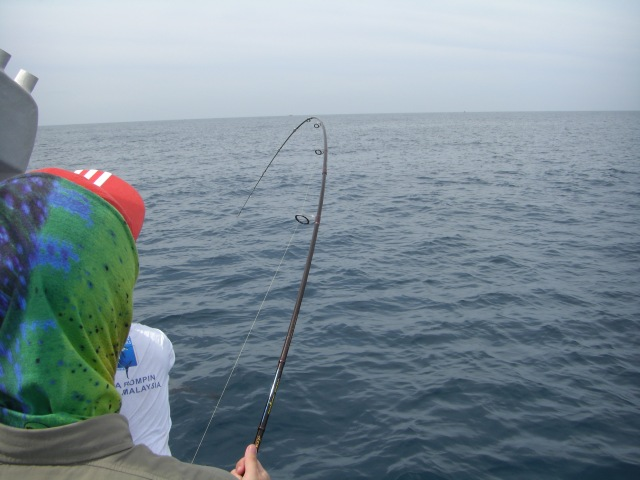 6-sailfish-no-2-15-10-16