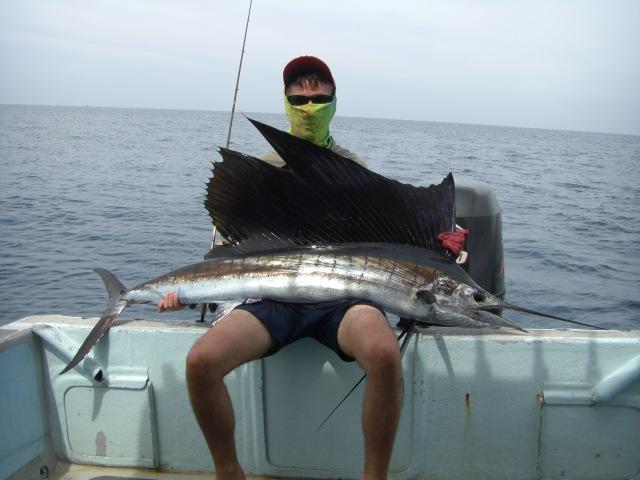 9-sailfish-no-2-15-10-16